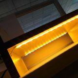승인되는 LED 유연한 지구 방수 UL
