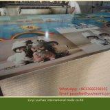 Umweltfreundliches Melamin-Papier stellte Spanplatten-Spanplatte gegenüber