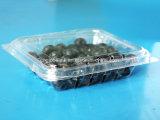 125gペット使い捨て可能で明確なプラスチックブルーベリー包装ボックス容器