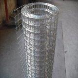 ячеистая сеть дюйма крена 2X2 метра 1.2X30 электрическая гальванизированная сваренная