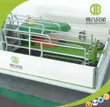 Embalaje de parto automático del precio barato de la alta calidad para la puerca