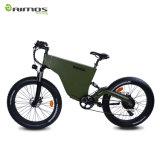 LCD 디스플레이 2017 새로운 디자인 뚱뚱한 타이어 MTB 전기 자전거