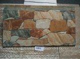 azulejo de cerámica de la pared del material de construcción de 300X600m m