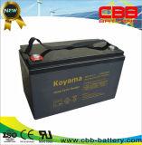 bateria profunda do AGM do ciclo de 12V110ah VRLA para o sistema solar DC110-12