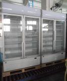 Double réfrigérateur en verre de boisson non alcoolique de refroidisseur de bière de porte (LG-1040CF)