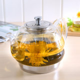Термостойкий боросиликатного стекла (HCG Teapot экзотических-1600)
