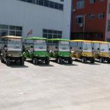 中国の製造業者の供給の安い価格のガスおよびElectircのゴルフカート