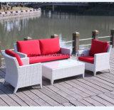 Conjunto al aire libre del sofá de la rota del jardín