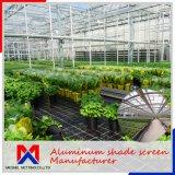 長さ10m~100mの農業のための中の気候の陰スクリーン