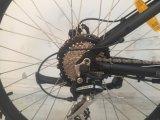 力の熱い販売の完全な中断電気バイクのBafang大きい高速モーター電気自転車Ebike