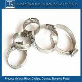 China modificó el acero inoxidable del estilo para requisitos particulares ajustable de Alemania 304 abrazaderas de manguito