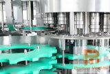 Automatische Glas Gebottelde het Vullen van het Water van de Bottellijn van het Mineraalwater Machine