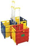 Carrinho de Compras de dobragem de plástico (FC403C-3)