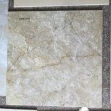 3D Tegels 60X60 van de Vloer van Ceramiektegels Desin