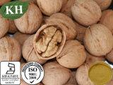 Высокое качество ореха черного цвета корпуса извлеките 10: 1
