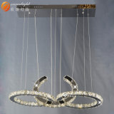 Lampen-Hotel-dekorative Kristallbeleuchtung, LED-dekoratives Licht (Om88147-3)