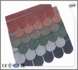Reforzado de fibra de vidrio colorido tejas de asfalto asfalto/Plaqueta