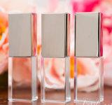 Bastone trasparente personalizzato di memoria del USB dell'a cristallo di fotographia di marchio 3D