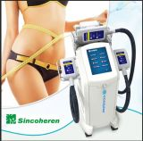 Machine de la Chine Cryolipolysis amincissant la machine
