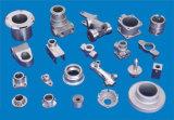 Lavoro del tornio di CNC di alta precisione, pezzi meccanici di CNC