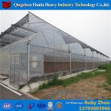Niedriger Preis Hidroponica landwirtschaftliches Glasgewächshaus in Polen