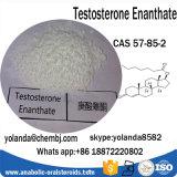 Het snel Verschepende Steroid Testosteron Enanthate van het Poeder voor Snel musle-Gebouw