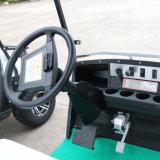 10人の乗客の電気ゴルフカートバス、熱い車輪の電気自動車