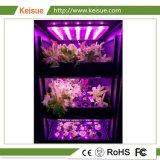 Agregado Keisue Fazenda Vertical com LED luz crescer