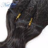 처리되지 않은 Malaysian 비꼬인 똑바른 씨실은 100% 사람의 모발 연장을 묶는다