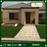 Colore quattro che modific il terrenoare erba artificiale con protezione durevole