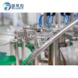 De de volledige Installatie van het Mineraalwater/Bottelmachine van het Mineraalwater