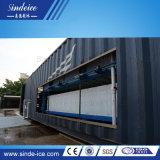 Интегрированная конструкция больших Big 5 тонн прямое охлаждение блока льда с 20м/40-футовом контейнере