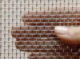Qualitäts-Galvano Galvanized Square Wire Ineinander greifen
