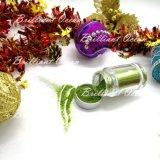 Colors Extra Fine Hobby & Craft Glitter Kids & Adults를 위한 눈을 부시게 하기
