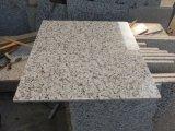 Lastre bianche cinesi del granito del granito G655/G439/G603 Bala di bianco/scale/pietre per lastricati