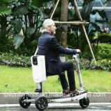 350W 500Wのハブモーター電気三輪車3の車輪の電気スクーターのバランスをとっている自己