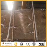 Mattonelle di marmo del Brown della foresta pluviale tropicale su ordinazione, controsoffitti, mattonelle di marmo della parete