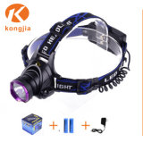 Qualität kundenspezifischer Scheinwerfer der Förderung-800 des Lumen-LED