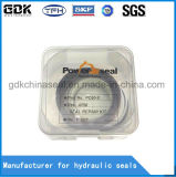 Braço do cilindro hidráulico de qualidade Nok Kit de Vedação (PC60-5)