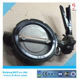 ハンドルまたはギヤワームBCT BCT-DKD71X-6が付いている鋳鉄ボディ蝶弁