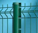 Valla de acero galvanizado de pulverización de PVC para la escuela
