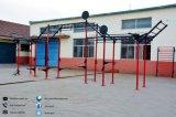 Equipo Funcional Entrenando Entrenamiento funcional funcional funcional Rig Equipo de ejercicio de la gimnasia funcional Instalaciones Completas ejercicios funcionales