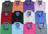 폴로 t-셔츠 (008)