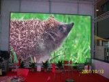 HD che fa pubblicità con lo schermo di visualizzazione esterno del LED di colore completo P6