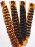 Estensioni dei capelli di Prebond (FJSP-03)