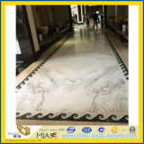 Новое Polished Castro White Marble для Countertop & Flooring Wall