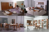 Europäische moderne Schlafzimmer-Sätze (MA-501)