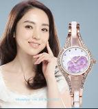 Het Horloge van mooie Vrouwen met de Riem Fs573 van de Legering