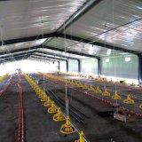 Granja avícola controlada ambiental de la parrilla vertida con el equipo automático
