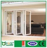 Finestra piegante di alluminio lustrata doppio con alto Quanlity (PNOC005)